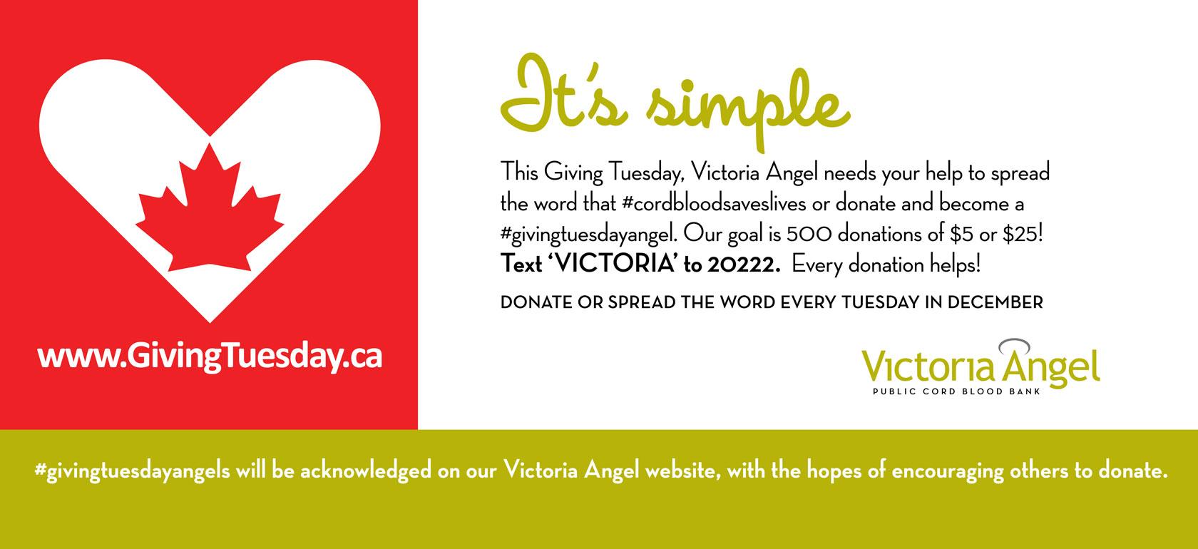 VA-Giving-Tues.web-1680x770.final